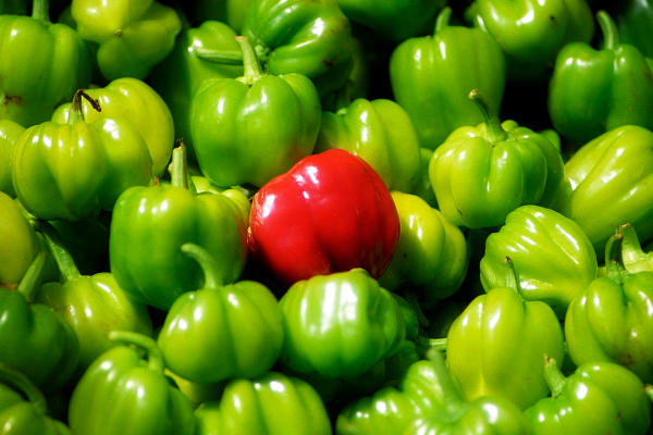 red pepper among green